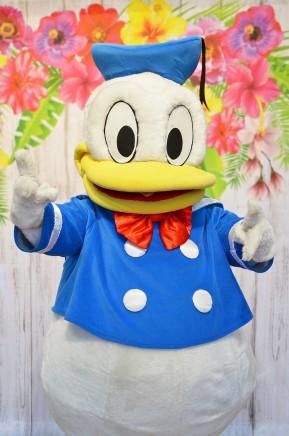 Kaczor Donald, chodząca postać bajkowa