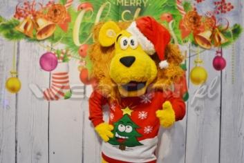 Lew Alex, świąteczne żywe maskotki do wynajęcia
