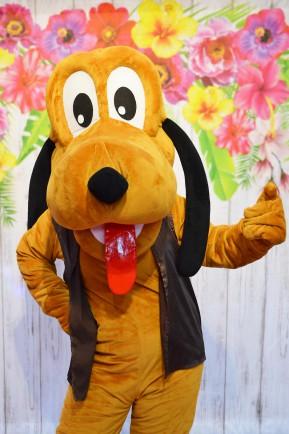 Pies Pluto, chodząca postać bajkowa