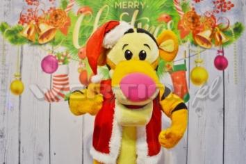 Tygrysek, świąteczna żywa maskotka do wynajęcia