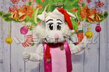 Zajączek Suzi, świąteczna żywa maskotka do wynajęcia