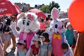 Zajączek Suzi jako chodząca żywa maskotka na imprezy dla dzieci