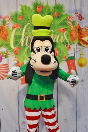 Goofy, świąteczne żywe maskotki do wynajęcia