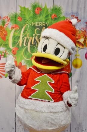 Kaczor Donald, wielkie żywe maskotki na imprezy