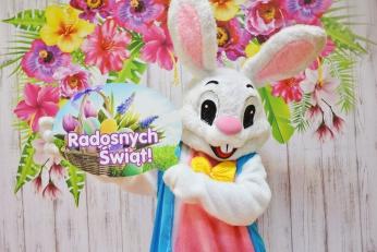 Wielkanocny Zajączek żywa maskotka do wynajęcia